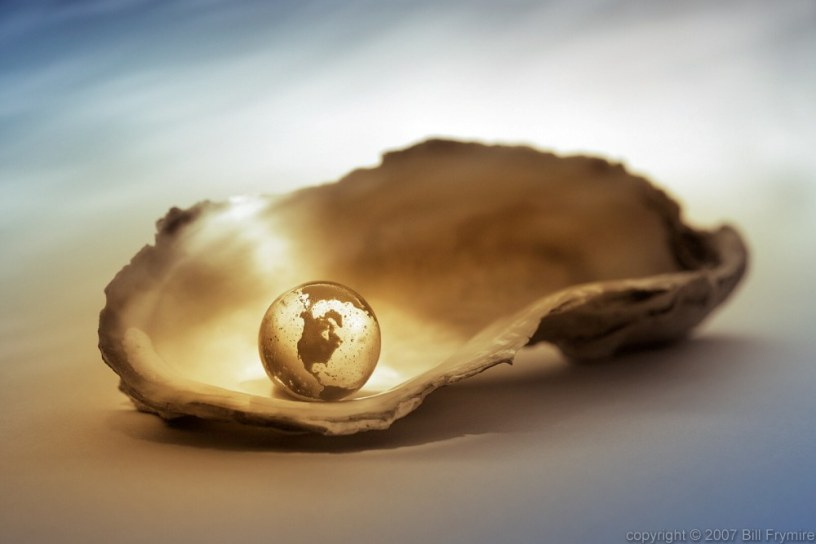 The world is your oyster still life